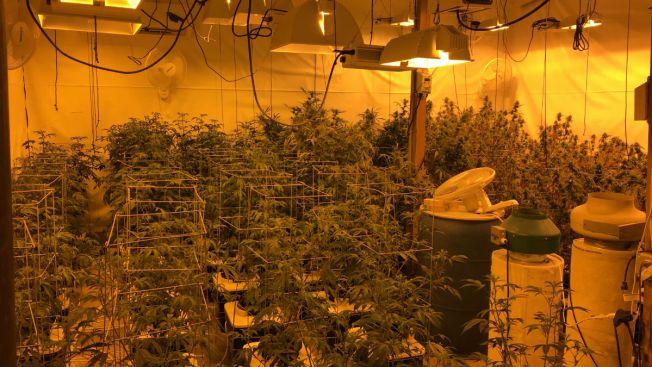 Suburban Man Charged With Growing Marijuana Inside Warehouse