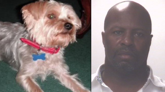 Mail Carrier Turns Himself In, Charged With Dog's Death