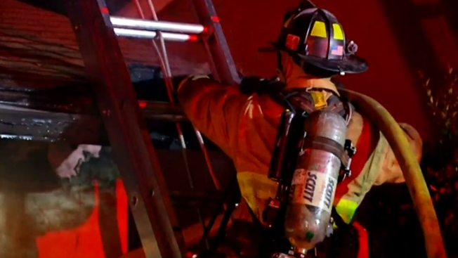 More Than a Dozen Puppies Saved in Back of the Yards House Fire