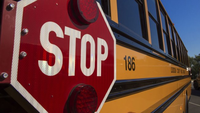 Car Safety Chief Backs Seat Belts on School Buses
