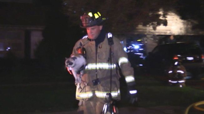 Family, Pets Displaced in Villa Park Fire