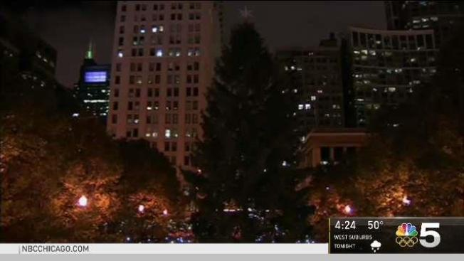 the touching story behind chicagos christmas tree - Chicago Christmas