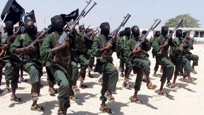 US, Somalia Forces Raid al-Shabab, Kill Several: Official