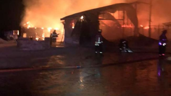 15 Horses Die in Stable Fire Near Monee
