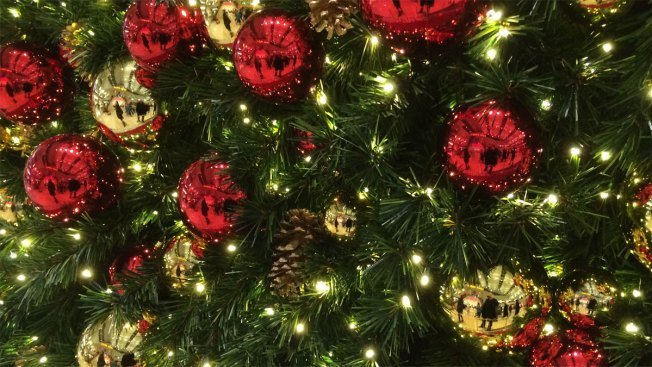 Chicago Offers Christmas Tree Recycling