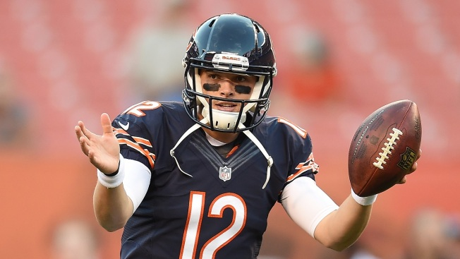 Should David Fales Get a Start for Bears This Season?