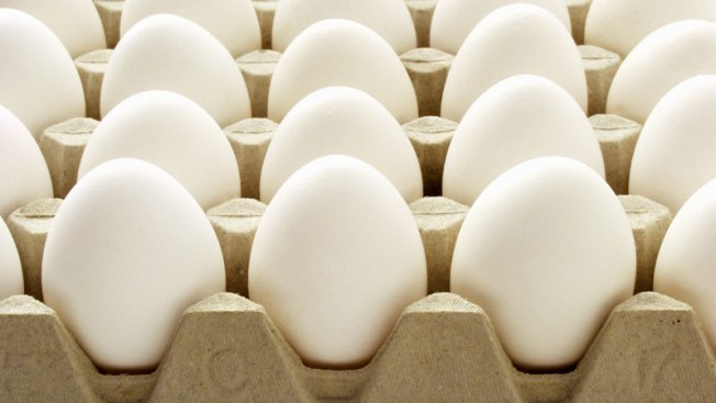 Truck Containing 180,000 Eggs Missing in Florida