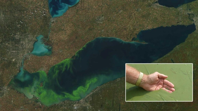 Deep Proposed Budget Cuts Would Scrap EPA's Great Lakes Cleanup