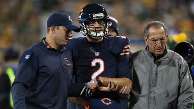 Brian Hoyer Placed on Injured Reserve by Bears