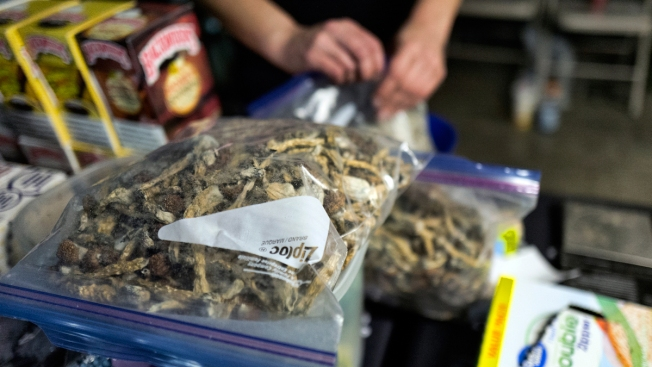 Denver Is 1st US City to Decriminalize 'Magic Mushrooms'