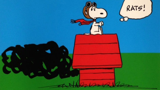 Thieves Steal Thousands of Dollars in 'Peanuts' Art From Gallery