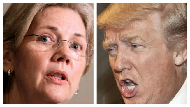 warren trump more support from than article