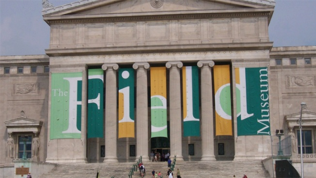 Field Museum Announces Staff Cuts