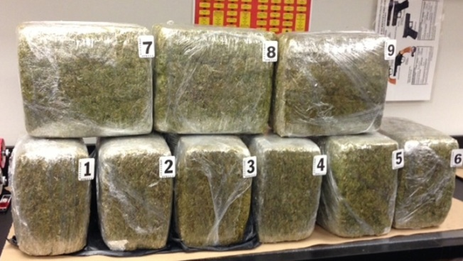 $100,000 Worth Of Pot Found In Recycling Container