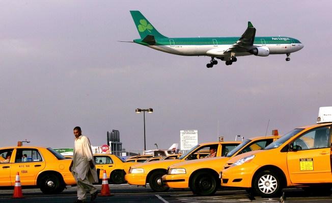 Cabbies Illegally Feeding JFK's Winged Menace