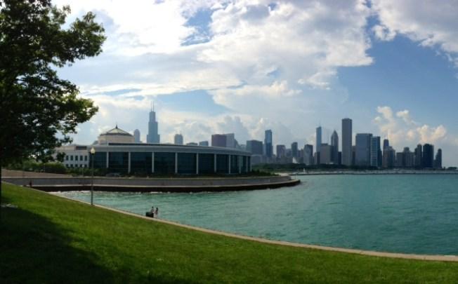 23-Year-Old Otter Dies at Chicago's Shedd Aquarium