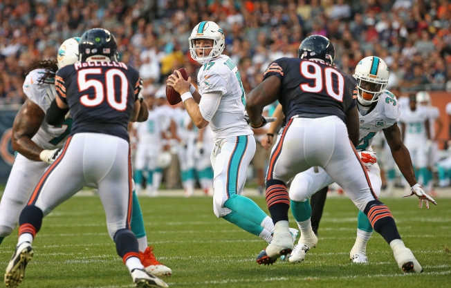 Bears Beat Dolphins 27-10 in Preseason Opener