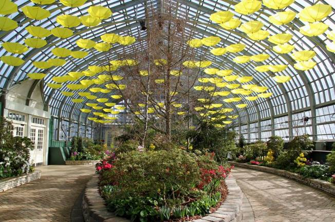 Garfield Park Conservatory is a Must-See For Spring