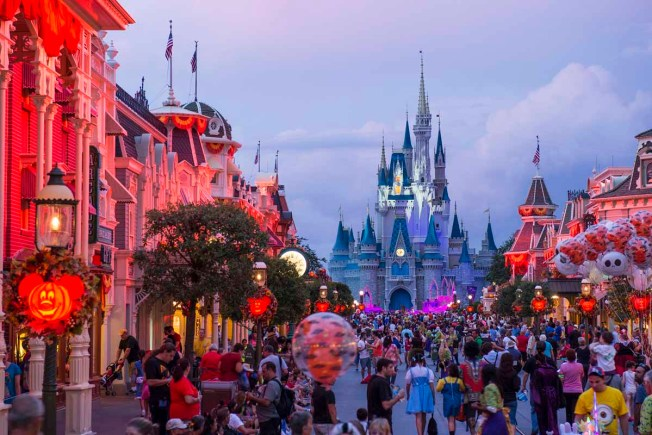 Man Fights Child Neglect Charge For Drinking at Disney World