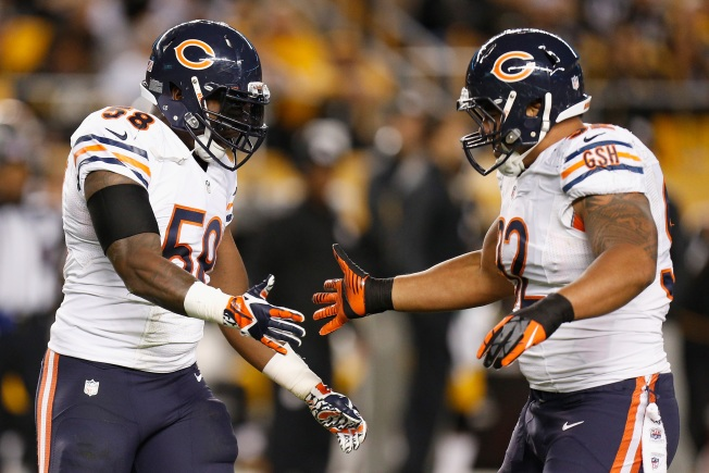 DJ Williams Placed on IR by Bears