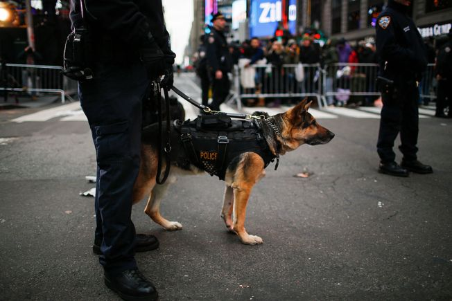 Police Deny Claims Drug-Sniffing Dogs Will Be Euthanized if Weed is Legalized in Illinois
