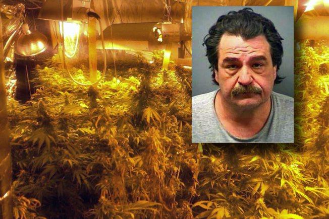 "Police Bust ""Sophisticated"" Pot Farm in Bourbonnais"