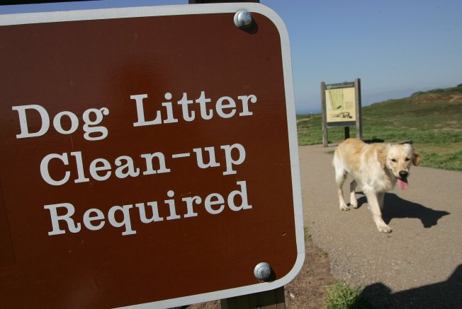 Got Poop? Chicago Pet Butler Franchisee Needed