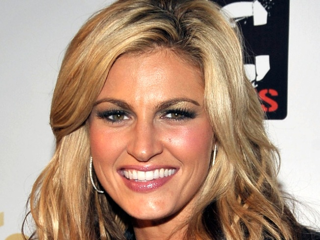 Erin Andrews Sues Hotels, Stalker Over Tapings