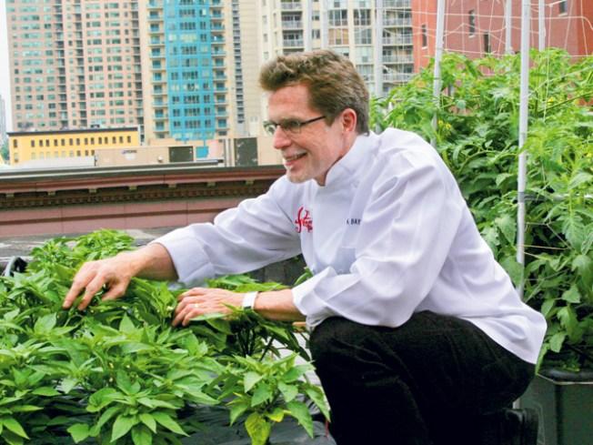 Chicago's Rooftop Restaurant Crops