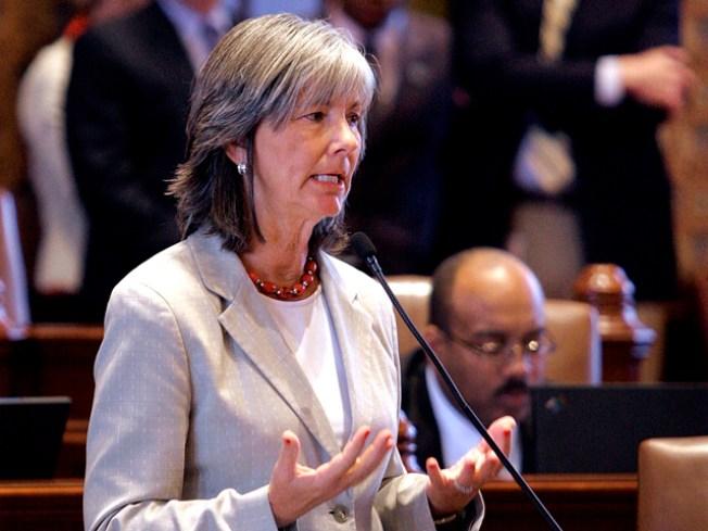 Quinn's Top Lt. Gov. Pick Likely Suburban Senator