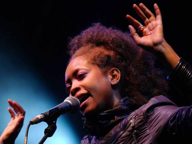 Badu Gets Probation, Fine for Nude Video Shoot