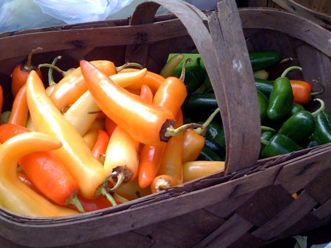 The 32nd Chicago Farmer's Market Season Begins