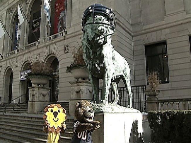 Lions Get 'Da Bears' Fever