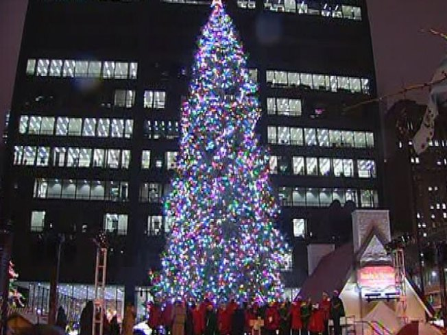 Vote for the Official Christmas Tree of Chicago