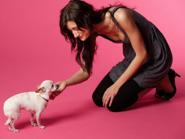 Pilates With Your Pooch