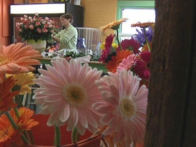 """""""Flower Shop"""" Crooks Caught"""