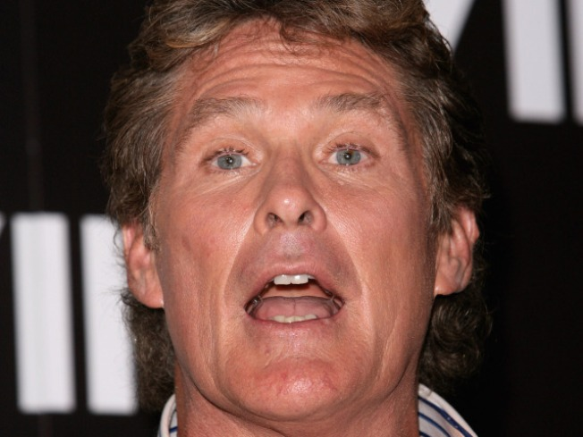 "David Hasselhoff Quits ""America's Got Talent"""