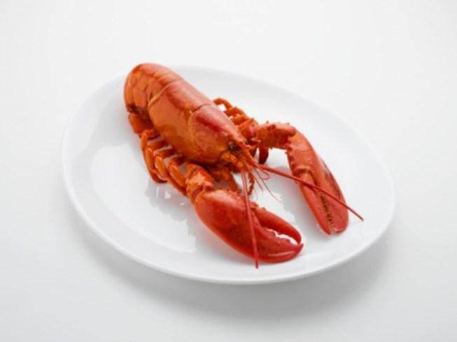 PETA Nit Picks Local Lobster Game