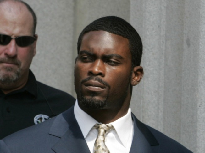 Leave this rumor to the dogs! Bears aren't interested in Michael Vick
