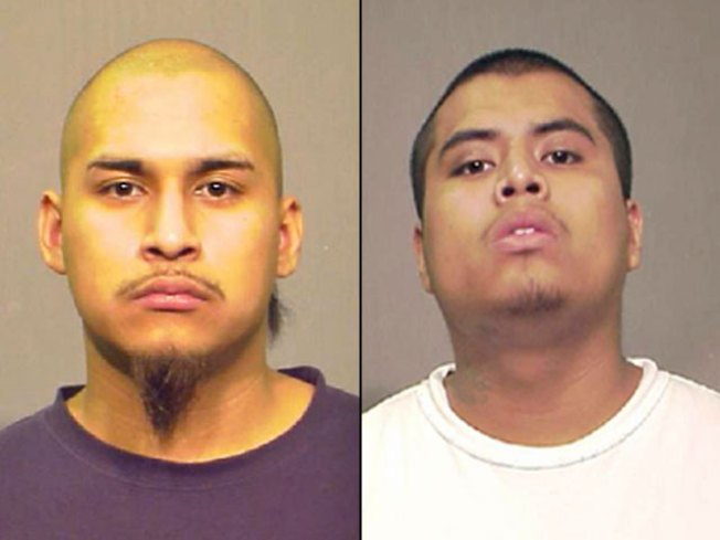 Pair Charged in Halloween Party Death of DePaul Student