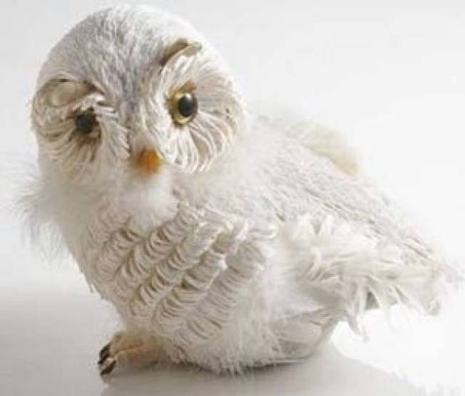 Winter White Snow Owl
