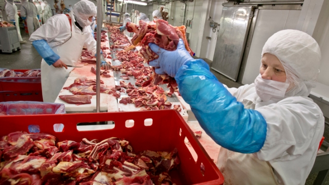 Horse Meat Scandal Ensnares U.K. Taco Bell, as U.S. Mulls Horse Slaughterhouses
