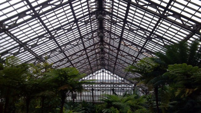 Garfield Park Conservatory Announces Fundraising Campaign