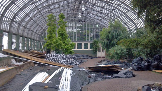 Hail-Damaged Garfield Park Conservatory Reopens