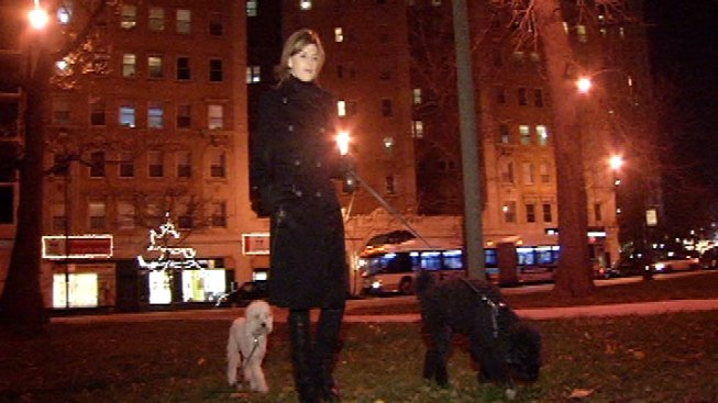Woman: Coyotes Surrounded Me, My Dogs