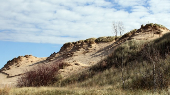 Indiana Dunes in the Running for Coastal Living's Best Beach in America