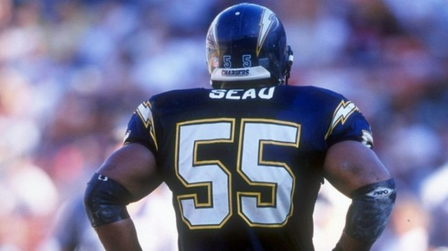 Researchers Ask for Seau's Brain