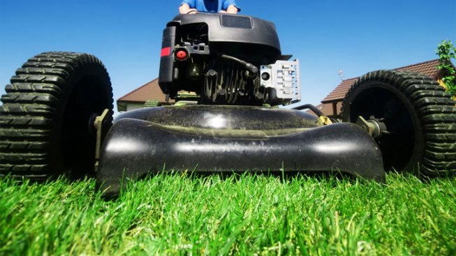 Man Busted for Allegedly Mowing Lawn in Loincloth Near Kids