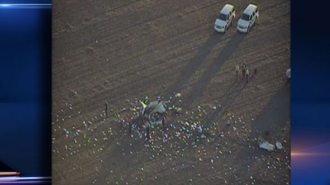 Aviation Executive Killed in Will County Plane Crash