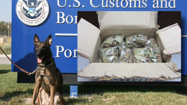 Dog Sniffs Out Opium Shipment at O'Hare